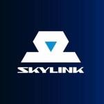 Скайлинк