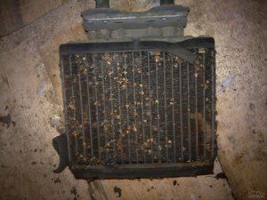 Забитый радиатор